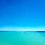 Latelierdal Voyage Floride 8