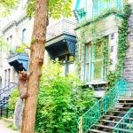 Latelierdal Voyage Montréal 5