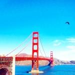 Latelierdal voyage San Francisco 2