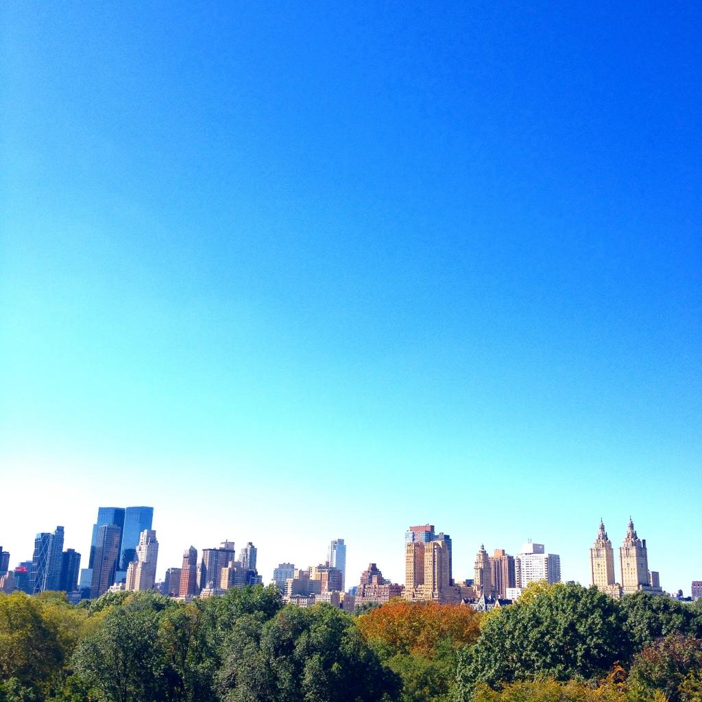 Vue MET NYC Latelierdal