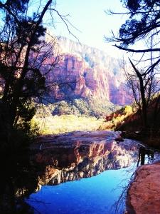 Zion canyon roadtrip usa latelierdal