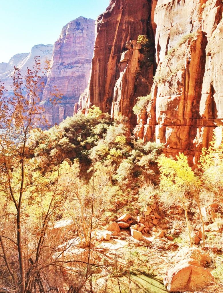 Zion national park Latelierdal road trip USA