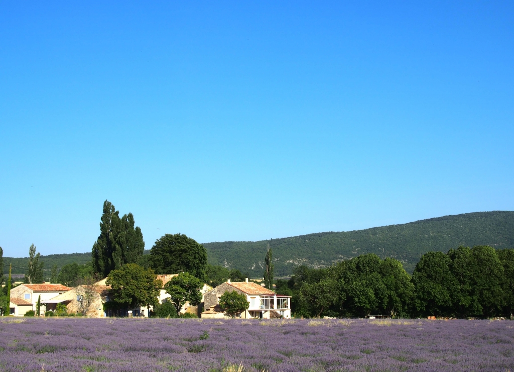 Provence city guide France Latelierdal lavande