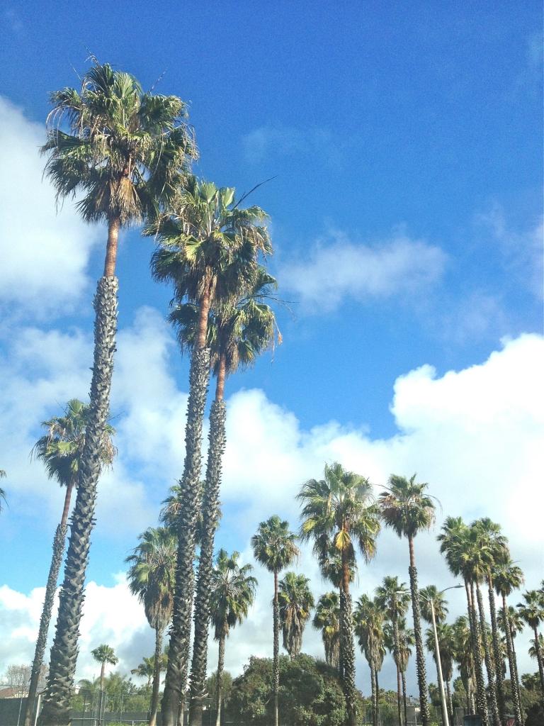 City guide Californie latelierdal los angeles
