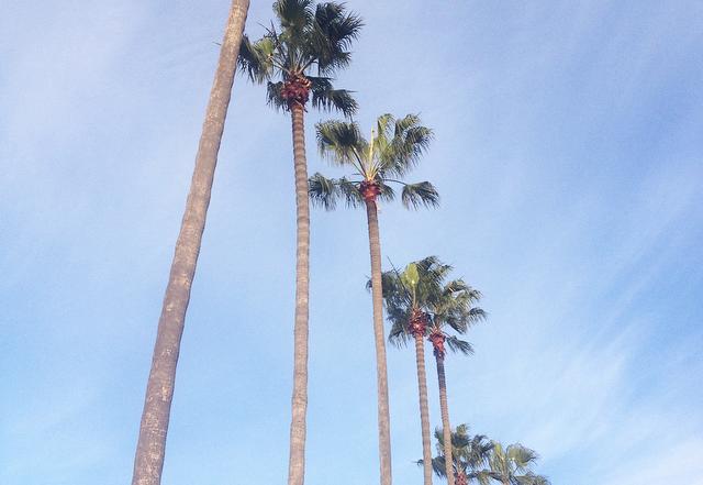 San Diego Latelierdal blog mode et voyage