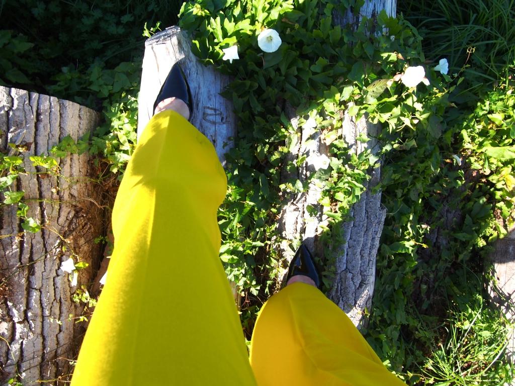 L'atelier d'al blog mode Pantalon moutarde